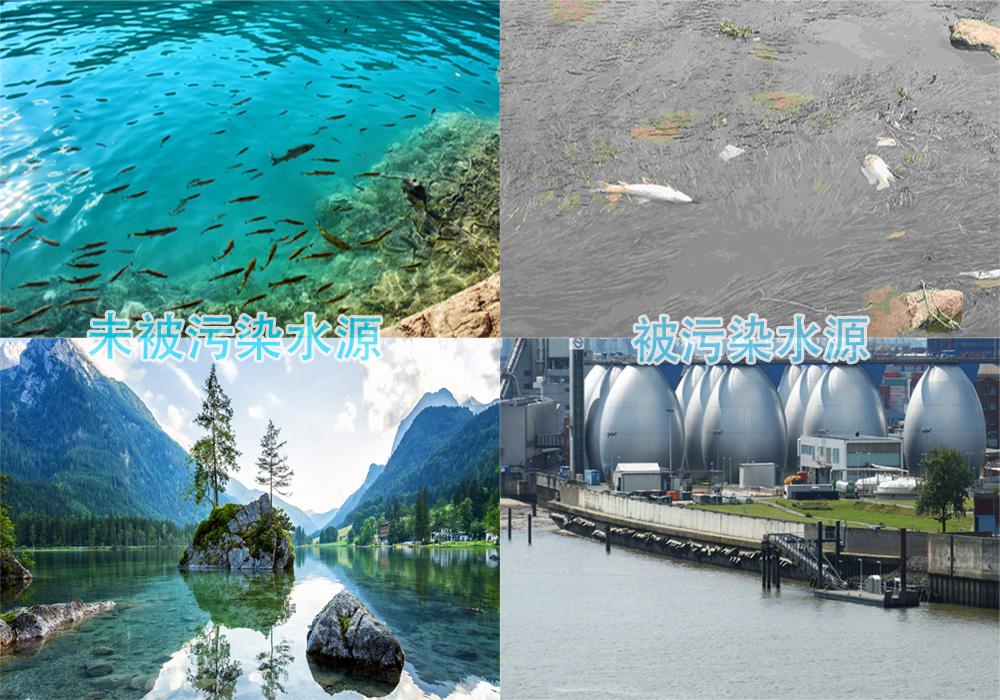 水质在线监测,慕迪科技